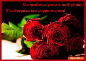 Картинка мне нравится тебе цветы дарить