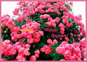 Открытка моим друзьям с любовью цветы