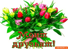 Открытка моим друзьям букет тюльпан