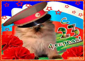 Открытка мужчине открытка на 23 февраля