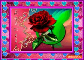 Открытка нежный цветок для тебя