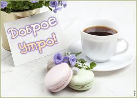 Картинка нежная картинка доброе утро с кофе