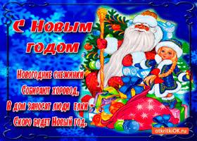 Картинка новогодние снежинки собирают хоровод