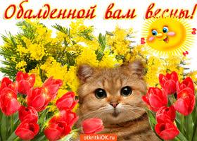 Картинка обалденной вам весны желаю