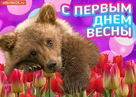 Картинка онлайн открытка первый день весны