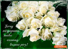 Картинка охапку белых роз дарю