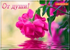 Открытка от души тебе цветочек