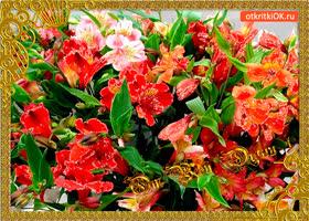 Картинка от всей души эти цветы
