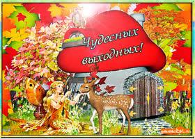 Открытка открытка чудесных выходных