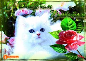 Картинка открытка с добрым приветом