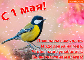 Картинка открытка 1 мая со стихами