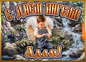 Открытка открытка день ангела адам