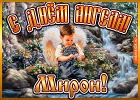 Открытка открытка день ангела мирон