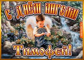 Картинка открытка день ангела тимофей