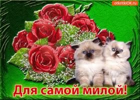Картинка открытка для самой милой