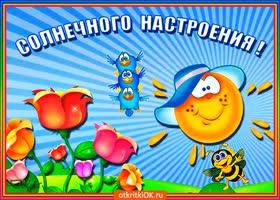 Картинка открытка для солнечного настроения