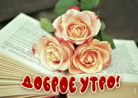 Открытка открытка доброе утро с розами и книгой