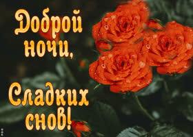 Картинка открытка доброй ночи, сладких снов