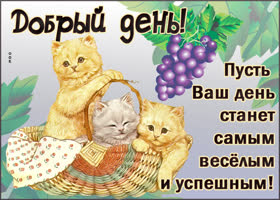 Открытка открытка добрый день с котиками