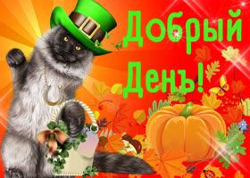 Картинка открытка добрый день с котом