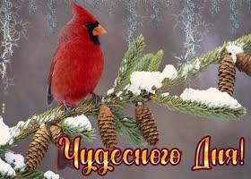 Картинка открытка хорошего дня с птичкой