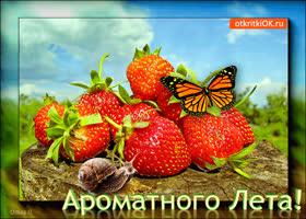Картинка открытка хорошего лета