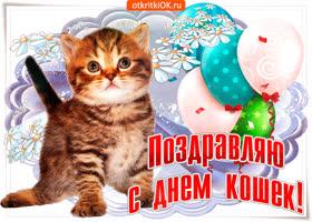 Картинка открытка ко дню кошек