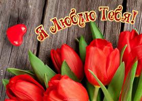 Открытка открытка люблю с тюльпанами
