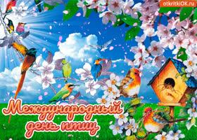 Картинка открытка международный день птиц