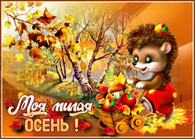 Открытка открытка моя милая осень