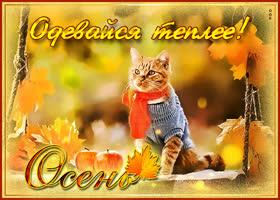 Картинка открытка одевайся теплее осенью