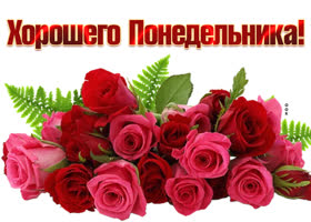 Картинка открытка понедельник с розами