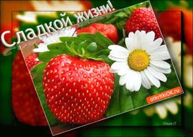 Картинка открытка пожелание сладкой жизни