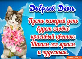 Открытка открытка пожелания доброго дня