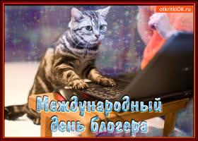 Картинка открытка с днём блогера