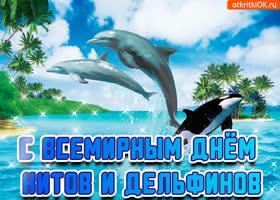 Открытка открытка с днём китов и дельфинов
