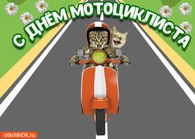 Открытка открытка с днём мотоциклиста 18 июня