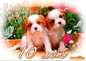 Открытка открытка с днём рождения 10 лет