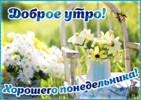 Картинка открытка с добрым утром и хорошего понедельника