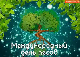 Картинка открытка с международным днём лесов