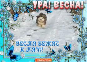 Картинка открытка с первым днём весны