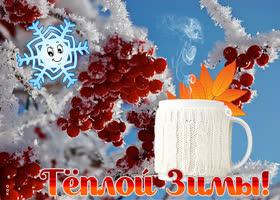 Картинка открытка с пожеланием теплой зимы