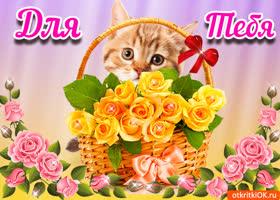 Картинка открытка с цветами и кошкой