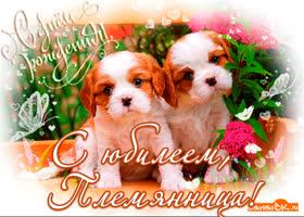 Картинка открытка с юбилеем племяннице
