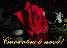 Открытка открытка спокойной ночи женщине красочная