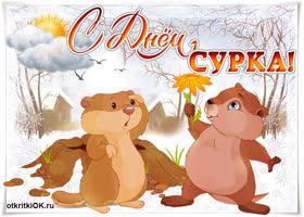 Картинка открытка в день сурка