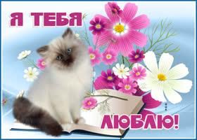 Открытка открытка я тебя люблю с котиком