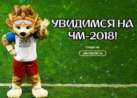 Картинка открытки чемпионат мира по футболу 2018