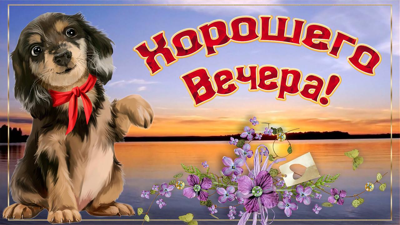 Открытка желаю доброго вечера! счастья и добра! очень красивая открытка! милый голос