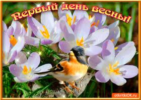 Картинка первый день неповторимой весны